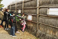 Seocheon Journey of Migratory Birds